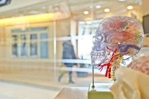 Vitaminas para el cerebro mejora tu memoria